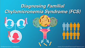 Slide Show - Diagnosing Familial Chylomicronemia Syndrome (FCS)